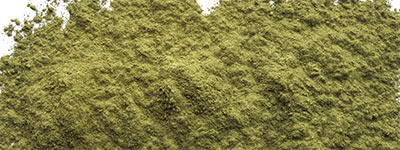 New Kratom Powder