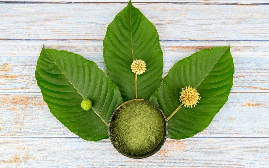 What are the Different Strains of Kratom and Their Effects?