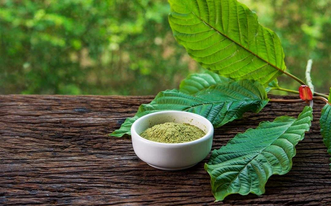 The Science Behind Kratom Powder – What to Know